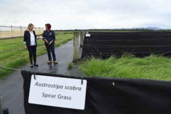 Environment Minister Sussan Ley (left) talks with Samantha Craigie, an ecologist with Greening Australia.