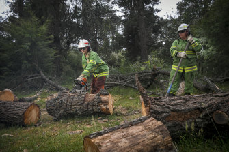 Melbourne Water firefighter Teagan Morris puts her chainsaw to use as Renelle Verkes looks on.