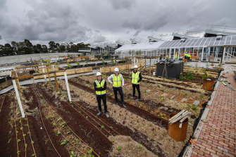 Frasers' Jack Davis and Peri Mcdonald with Living Building Challenge's Stephen Choi in Burwood Brickworks shopping centre's rooftop farm.