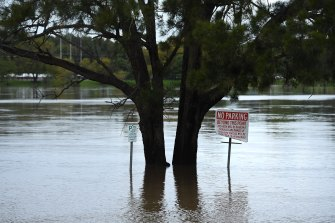 In August, Nowra endured its biggest flood in almost three decades. Rainfall across NSW in the first eight months of 2020 was 432 millimetres, or 15 per cent more than the long-run average.