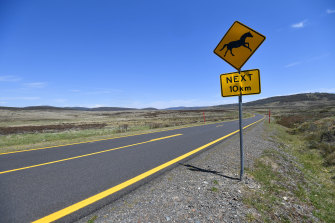 A sign on the Snowy Mountains Highway. For many, the absence of horses from this landscape is unthinkable.