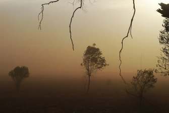 Dust storms were a regular feature of this spring across inland NSW and Queensland.
