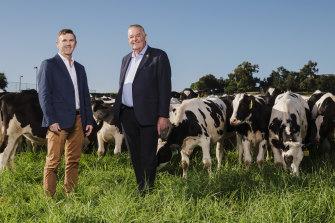 Tony Perich and his son Mark on the dairy farm of family's Leppington Pastoral Company.