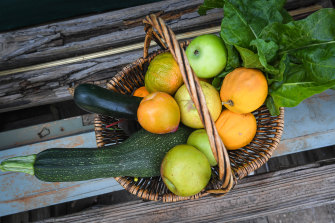 A basket of fruit and vegetables picked by the Lekatsases.