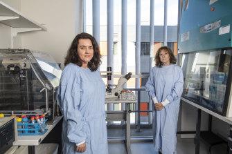 Associate Professor Meg Jardine and Professor Carol Pollock at the Kolling Institute of Medical Research.