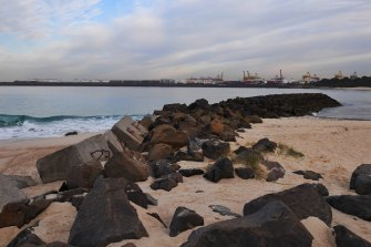 Randwick City and Bayside councils are opposed to the idea of a cruise ship terminal at Botany Bay.