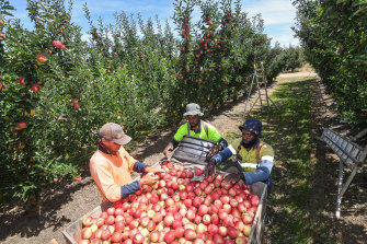 Farmers are warning the Nationals party must stump up on its promise for a new dedicated visa for agriculture workers.