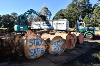 Messages of support sprayed on fallen trees at Kalorama football oval.