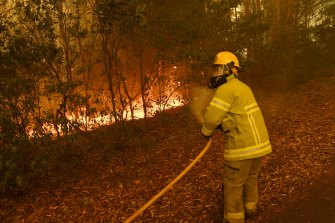 Northern Territory Fire and Rescue crews work on the eastern fingers of the Currowan fire at Tomerong on Saturday.