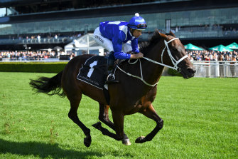 A son or daughter of Winx would be worth more than $5 million at auction according to bloodstock experts.