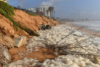Managing coastal erosion is one example of the role councils play in wider matters of environmental significance, such as climate change and biodiversity.