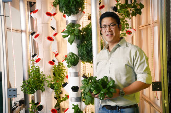 Founder of Invertigro Ben Lee alongside a cube with hydroponic vegetables in it.