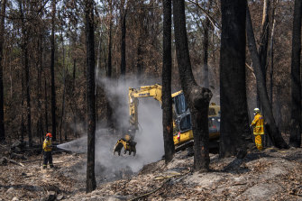 An RFS crew works to extinguish a fire smouldering in buried leaves and tree roots.