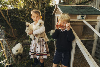 Daphne and Peter Ward, age 5 and 3, with the silkies in their backyard in Cremorne.