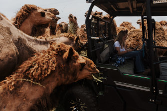 Finalist in Australian Life photography prize: