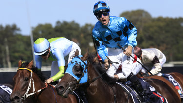 Tommy Berry is jubilant after winning the Rosehill Guineas on Mo'unga in March.