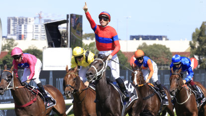 McDonald marvels at Waller stable's Verry Elleegant masterpiece