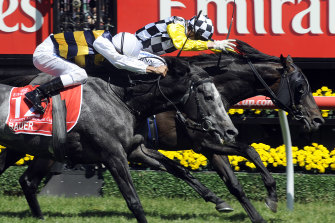 OTI's Bauer was narrowly defeated by Viewed in the 2008 Melbourne Cup.