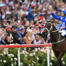 By any measure, Winx is streets ahead