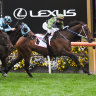 Incentivise lays down a Cup marker with impressive Makybe win