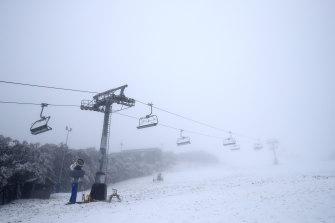 Mount Buller last year.