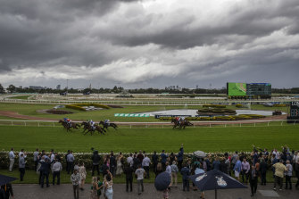 A seven-race twilight meeting at Rosehill wraps up the working week for Racing NSW.