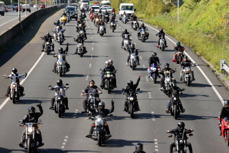 A procession of motorbikes heads along the Southern Motorway towards the Auckland Domain for an anti-lockdown protest  on Saturday.