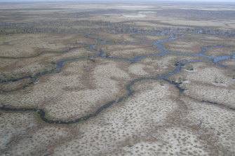 Booligal wetlands on the Lachlan River receive some drought-breaking flows.