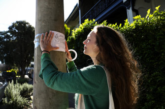Emma Sweeney (not her real name) has resorted to putting posters on trees and telegraph poles in search of an egg donor.