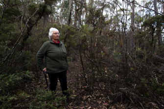 Gundungurra elder Auntie Sharyn Halls at Radiata Plateau in the Blue Mountains. The area will be known as the Ngula Bulgarabang Regional Park.