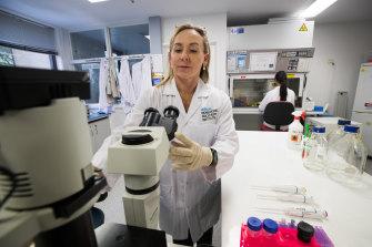 Professor Sharon Ricardo's lab was closed under COVID-19 restrictions.