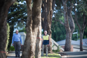 Neighbours Rupert Johnston and Antonio Di Martino are angry at Yarra Ranges Council for refusing to chop down street trees.