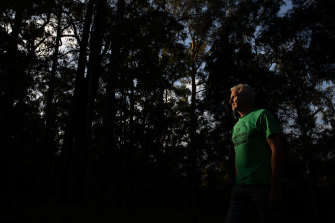 Bellingen Mayor Dominic King is unclear where his council's Koala Plan of Management stands.