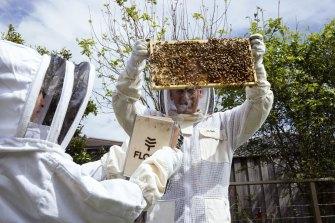 Beekeeper Gavin Sandercoe and his children, James and Natasha.