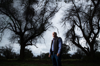 Bruce Maynard, whose grandmother and great aunt planted peppercorn trees on the Narromine Golf Course in the 1920s, believes they are dying from exposure to chemicals sprayed on nearby cotton farms.