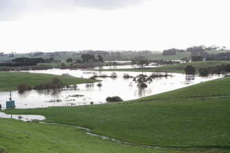 Flooded farmland in the Moyne Shire in August.