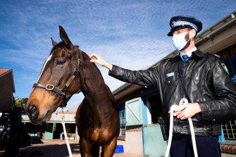 Senior Constable Patrick Condon with Troop Horse Tobruk.