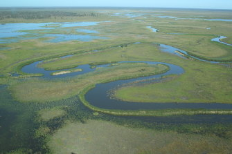 Wetlands in the Great Cambung Swamp at the end of the Lachlan River begin to fill up.