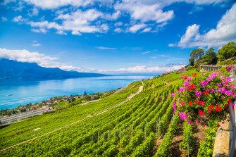 Switzerland's Lavaux wine region, a UNESCO World Heritage Site since 2007.