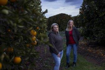 Jo Brighenti (left) and rice grower Debbie Buller on the Brighenti's valencia orange farm in Griffith.