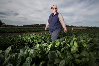 Rae McFarlane in a spinach field.