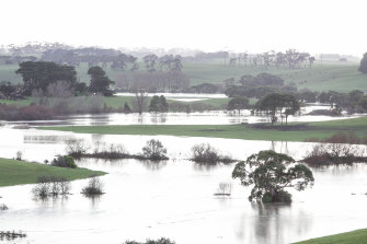 Flooding in supposedly drought stricken Moyne Shire in August.