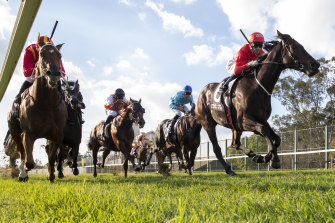 Exoboom sweeps down the centre of the track to win the Hawkesbury Guineas.