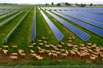 Farm leaders are urging politicians to include agriculture in net zero plans so the sector can cash in on opportunities created by low emissions economies.