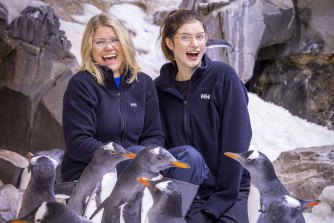 Kate McLennan (left) and Kate McCartney get up close with the penguin's at SEA LIFE Melbourne Aquarium.