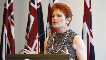 Pauline Hanson said she wanted her party to build a solid foundation for the future of One Nation.