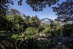 Wendy Whiteley's Secret Garden, Lavender Bay.