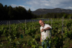 The Tulloch vineyard and winery is carbon neutral across the growing and wine-making process.