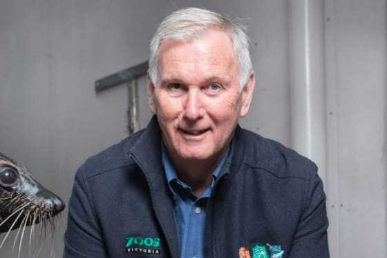 Kevin Tanner, Melbourne Zoo director.