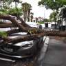 A tree has fallen on the vehicle and is blocking Bay Road in Port Melbourne after heavy storms.